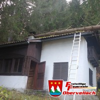 Baum auf Haus gestürzt