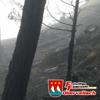 Waldbrand Plankogel